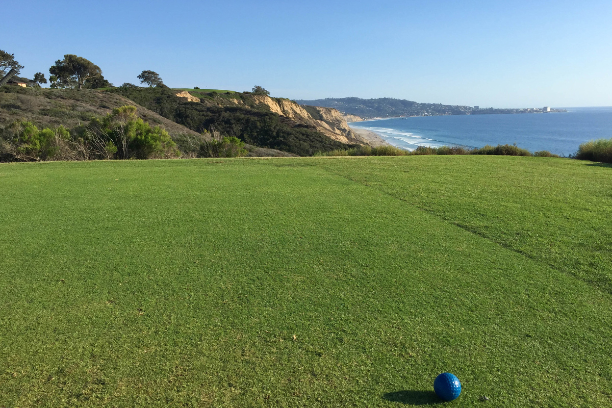 travel-san-diego-torey-pines-golf-beauty-ressort