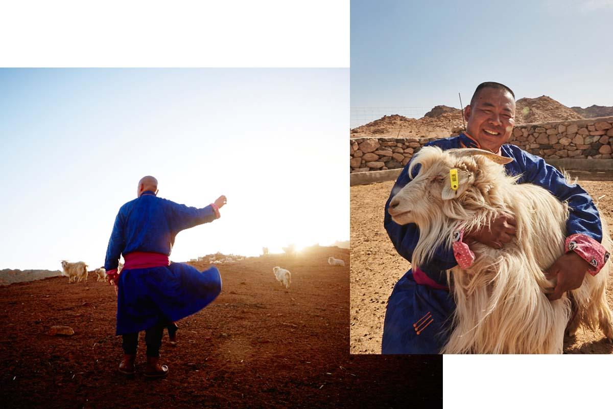 madeleine-cashmere-mongolei